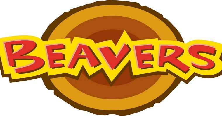 Beavers Groups for Children in Berkshire