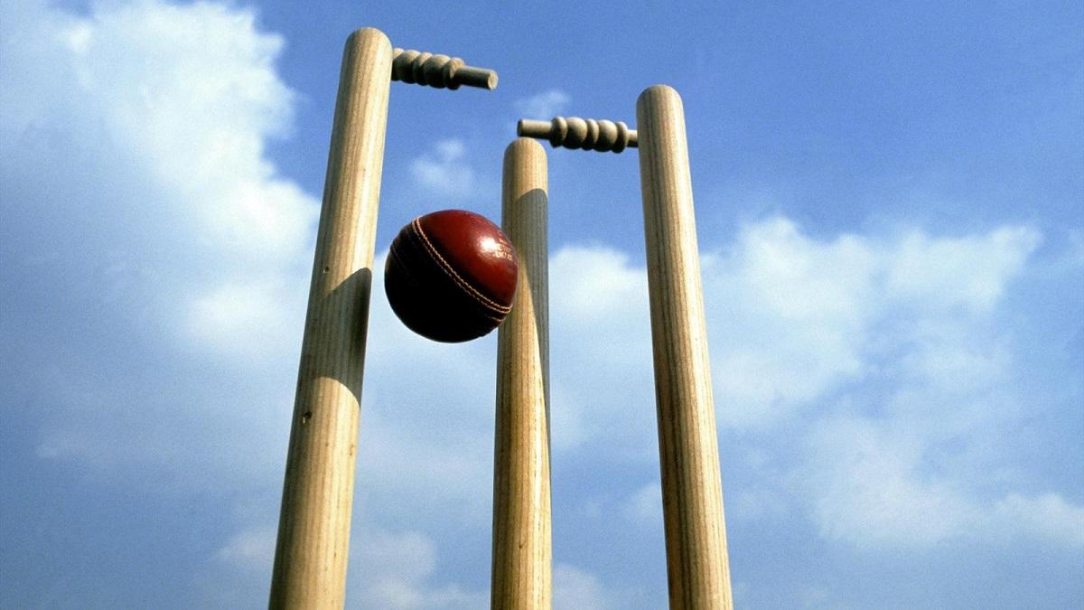 Cricket Coaching for Children in Berkshire