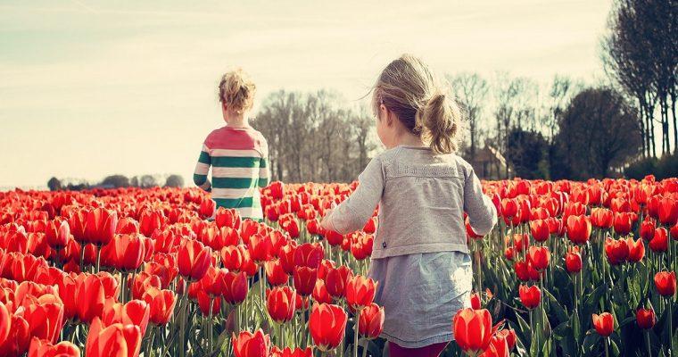 Walks in Berkshire for Families