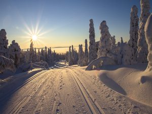 Family holidays to Lapland 2018