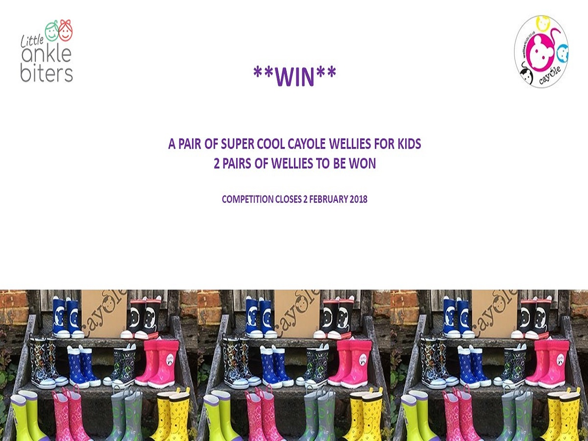 Cayole Wellies Competition January 2018, Terms and Conditions