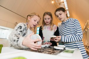 May Half Term at Henley River and Rowing Museum