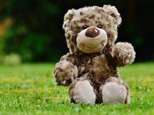 teddy bears picnic wellington country pary berkshire 11 12 august 2018