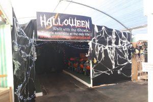 Halloween half term at stubbings october 2018