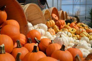 Pumpkin carving nicholson shopping centre maidenhead october 2018